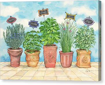 Herb Garden Canvas Print by Paul Brent