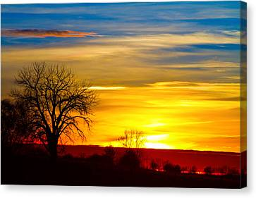 Here Comes The Sun Canvas Print by James BO  Insogna