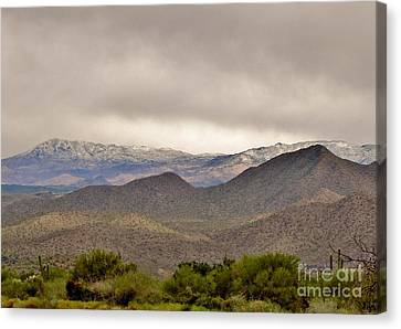 Here Comes The Sun Canvas Print by Marilyn Smith