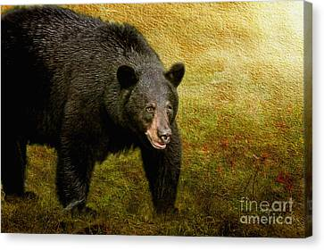 Here Comes Trouble Canvas Print by Lois Bryan