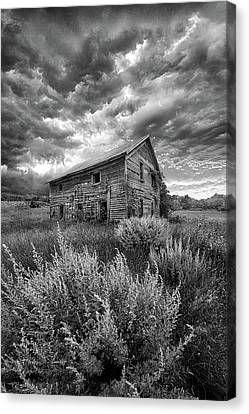 Here There Be Ghosts Canvas Print by Phil Koch