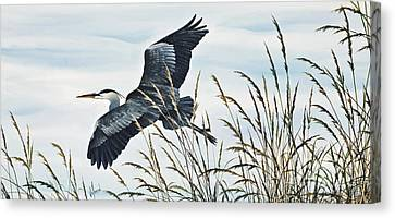Herons Flight Canvas Print by James Williamson