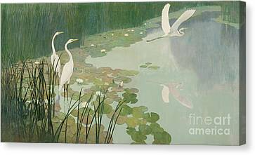 Herons In Summer Canvas Print by Newell Convers Wyeth