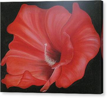 Hibiscus Melody Canvas Print by RJ McNall
