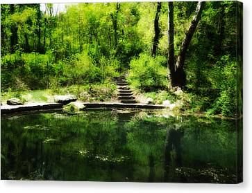 Hidden Pond At Schuylkill Valley Nature Center Canvas Print by Bill Cannon