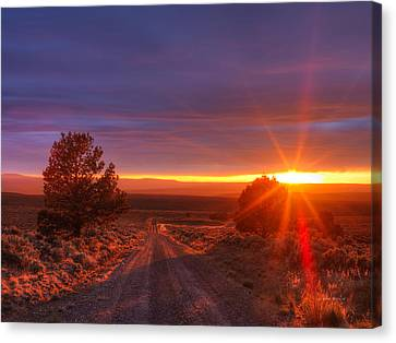 High Desert Road Canvas Print by Leland D Howard