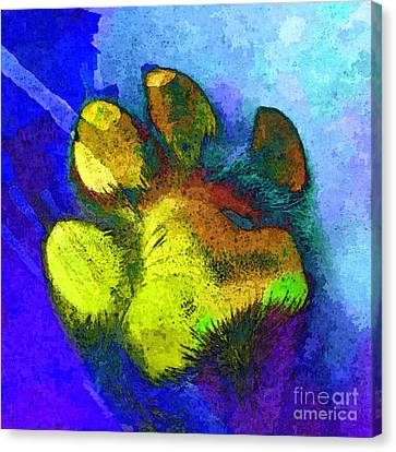 High Five Canvas Print by Stacey Chiew