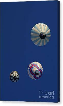 High Flight Canvas Print by Cyril Furlan