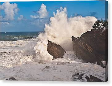 High Wave Warning At Shore Acres Canvas Print by Alvin Kroon