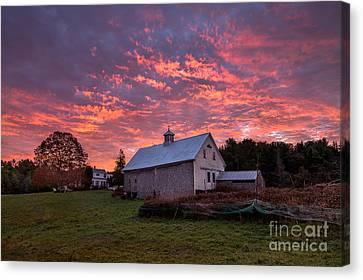 Highland Road Barn At Sunrise Canvas Print by Benjamin Williamson
