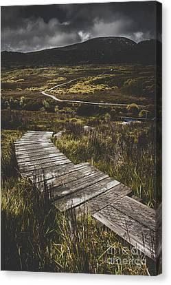 Hiking Trail Leading To Distant Australia Bushland Canvas Print by Jorgo Photography - Wall Art Gallery