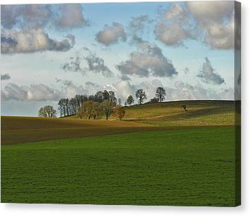 Hill Country Canvas Print by Bonnie Bruno