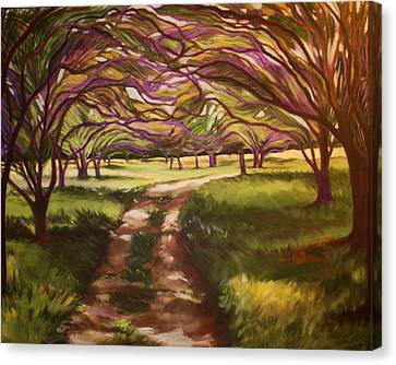 Hill Country Stroll Canvas Print by Suzaine Smith
