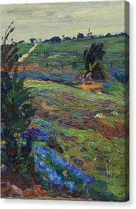 Hills Of Joy Canvas Print by Maris Salmins