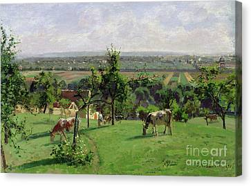 Hillside Of Vesinet Canvas Print by Camille Pissarro