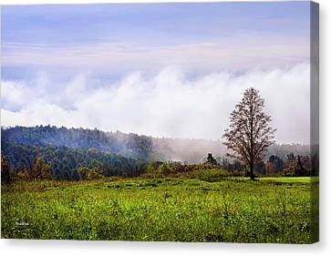 Hilltop Fog Sunrise Landscape Canvas Print by Christina Rollo