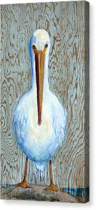 His Beak Can Hold More Than His Belly Can Canvas Print by Billie Colson