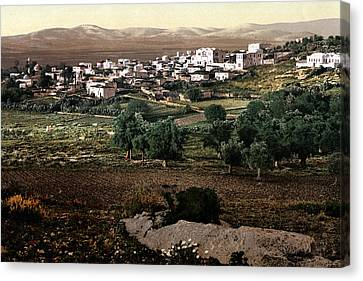Holy Land - Jenin Canvas Print by Munir Alawi
