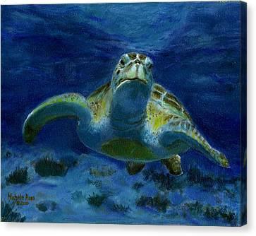 Honaunau Honu Canvas Print by Michele Ross