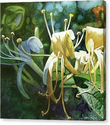 Honeysuckle Sun Canvas Print by Andrew King