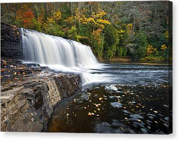 Hooker Falls In Autumn - Fall Foliage In Dupont State Forest Canvas Print by Dave Allen