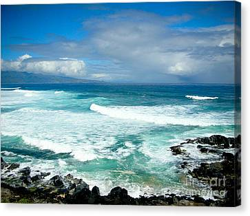 Hookipa Beach Maui Canvas Print by Kelly Wade