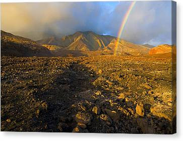 Hope From Desolation Canvas Print by Mike  Dawson