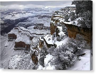 Hopi Pont Snowscape Canvas Print by Mike Buchheit
