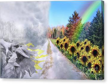 Hoping For A Better Life Canvas Print by Cathy  Beharriell
