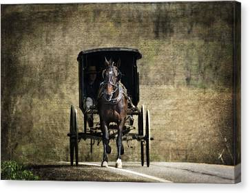 Horse And Buggy Canvas Print by Tom Mc Nemar