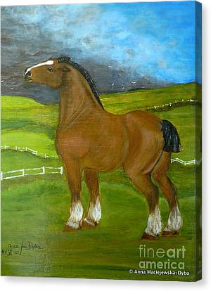 Horse And The Storm Canvas Print by Anna Folkartanna Maciejewska-Dyba