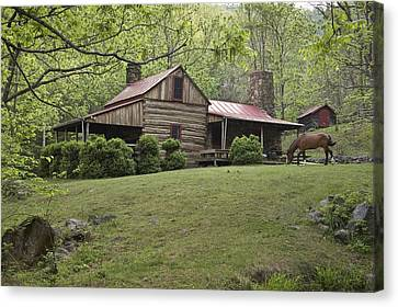 Horse Grazing In The Yard Of A Mountain Canvas Print by Greg Dale