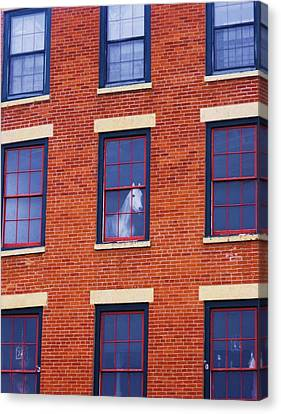 Horse In An Upstairs Window Canvas Print by Anna Villarreal Garbis