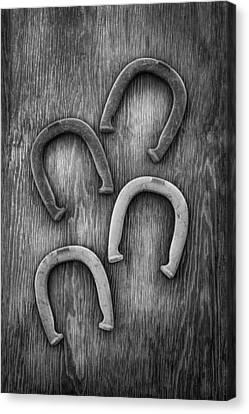 Horseshoes Set Canvas Print by YoPedro