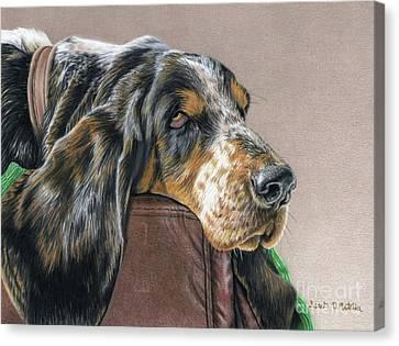 Hound Dog Canvas Print by Sarah Batalka