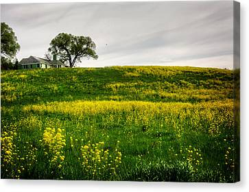 House On The Hill Canvas Print by Greg Mimbs