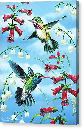 Humming Birds Canvas Print by JQ Licensing