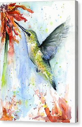 Hummingbird And Red Flower Watercolor Canvas Print by Olga Shvartsur