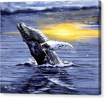 Humpback Whale Breaching Canvas Print by Bob Patterson