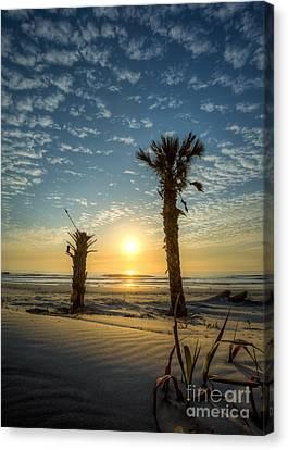 Hunting Island State Park Beach Sunrise Canvas Print by Dustin K Ryan