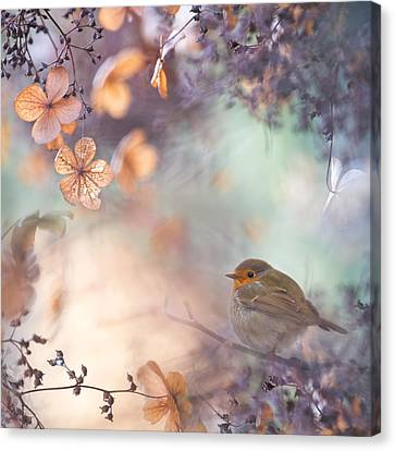 Hydrangea Fantasy Canvas Print by Teuni