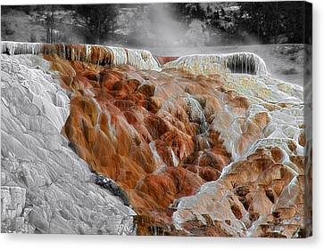 Hymen Terrace Mammoth Hot Springs Yellowstone Park Wy Canvas Print by Christine Till