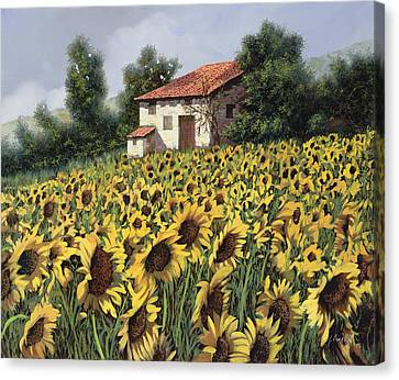 I Girasoli Nel Campo Canvas Print by Guido Borelli