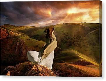 I Have A Dream Canvas Print by Ian David Soar