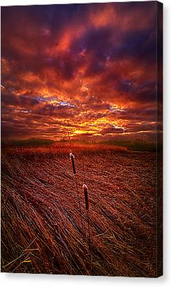 I Know That We Can Make It, You And Me Canvas Print by Phil Koch