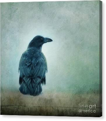 I Know The Way Canvas Print by Priska Wettstein
