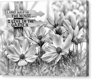 I Live In The Garden-2 Canvas Print by Nina Bradica