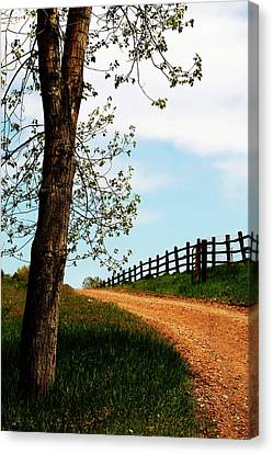 I Walk The Gravel Road Canvas Print by Marilyn Hunt