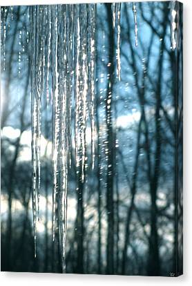 Icicle Art Fun 10 Canvas Print by Debra     Vatalaro