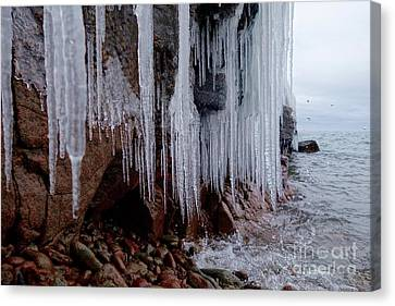 Icicles And Waterdrops Canvas Print by Sandra Updyke